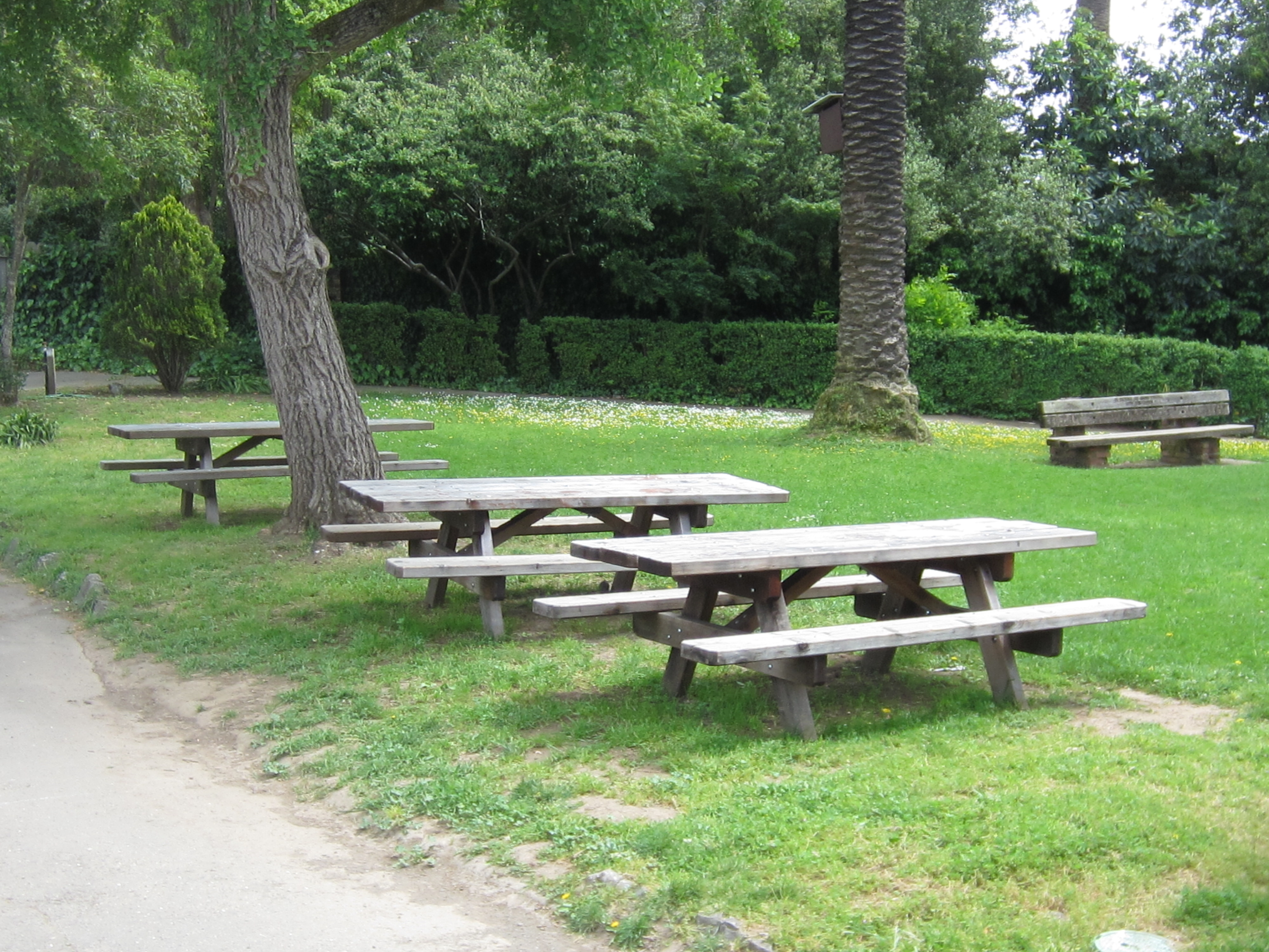 Robson Upper Picnic Area